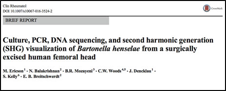 Dr  Mozayeni Co-Authors Paper Indicating Bartonella henselae